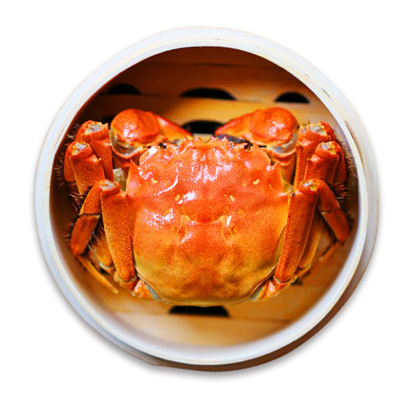 6送4共10只阳澄湖大闸蟹鲜活特大螃蟹公4.5两母3.5两礼盒