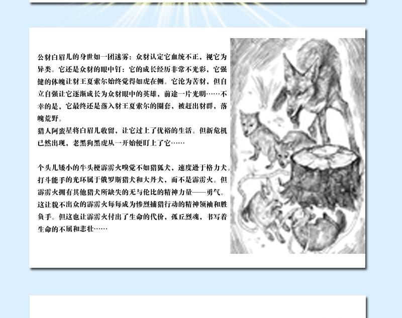 沈石溪动物小说精选全集西顿动物小说故事精品系列