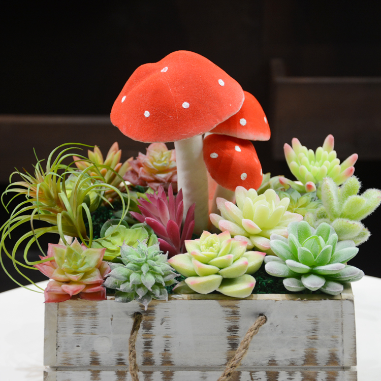 Flowers without defects, artificial succulents, artificial green, tropical, mini potted, photo frame, flower, green wall