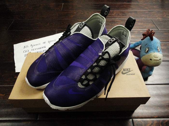 Кроссовки Nike AIR FOOTSCAPE MOTION Fragment HTM 397817-500