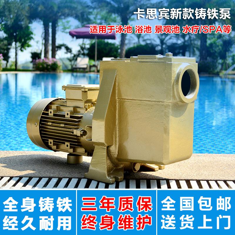 游泳池循环水处理设备泳池水泵循环过滤泵带毛发收集器水泵铸铁泵