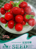 Watch pepper seeds multicolored towards the sky Terrace potted plants spring and autumn sowing pepper seeds fruits and vegetables flowers pepper