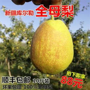 【新疆直发】新疆库尔勒香梨全母梨新鲜水果梨子整箱10斤顺丰包邮