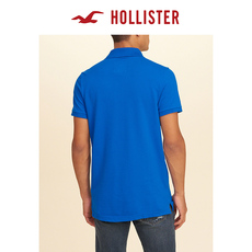 Рубашка поло 146070 Hollister Polo