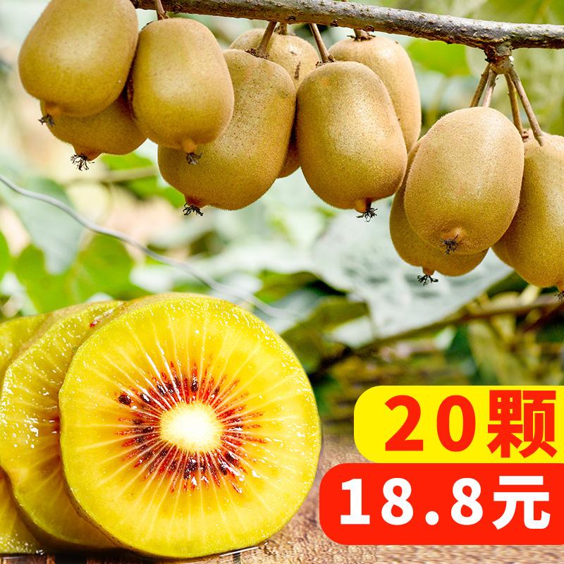 红心猕猴桃新鲜现货四川蒲江大果特大孕妇应季水果奇异果5斤30个