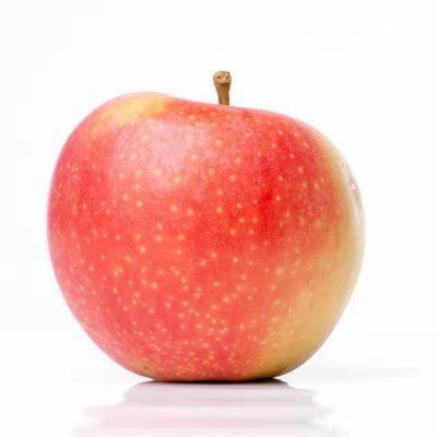 拍2件 丹田 东北红富士苹果10斤