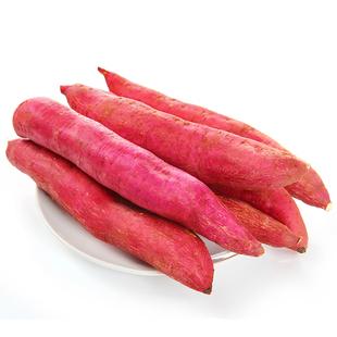 陕西特产正宗板栗红薯新鲜10斤带箱番薯黄心粉糯农家自种地瓜山芋