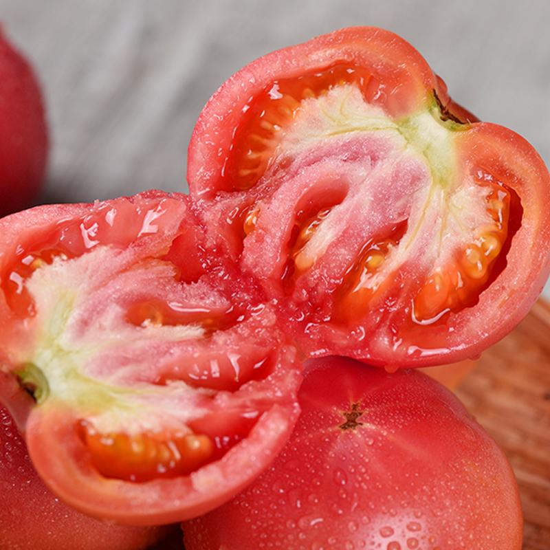 自然熟云南西红柿孕妇水果生吃大番茄农家新鲜非有机蔬菜整箱5斤