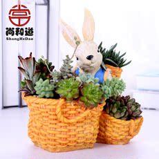 Цветочный горшок Shang Hedao