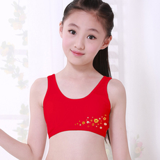 Stomacher Sum drum Red tube top