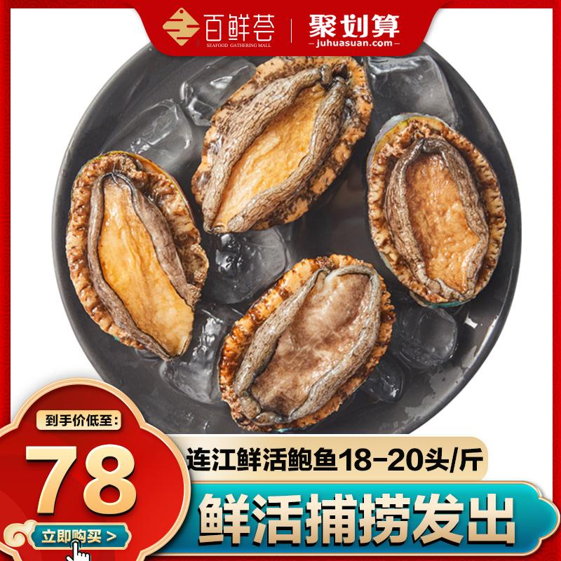 百鲜荟 连江鲜活鲍鱼 18-20头 500g