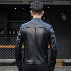 Leather Royal armored sprinkle dy0012