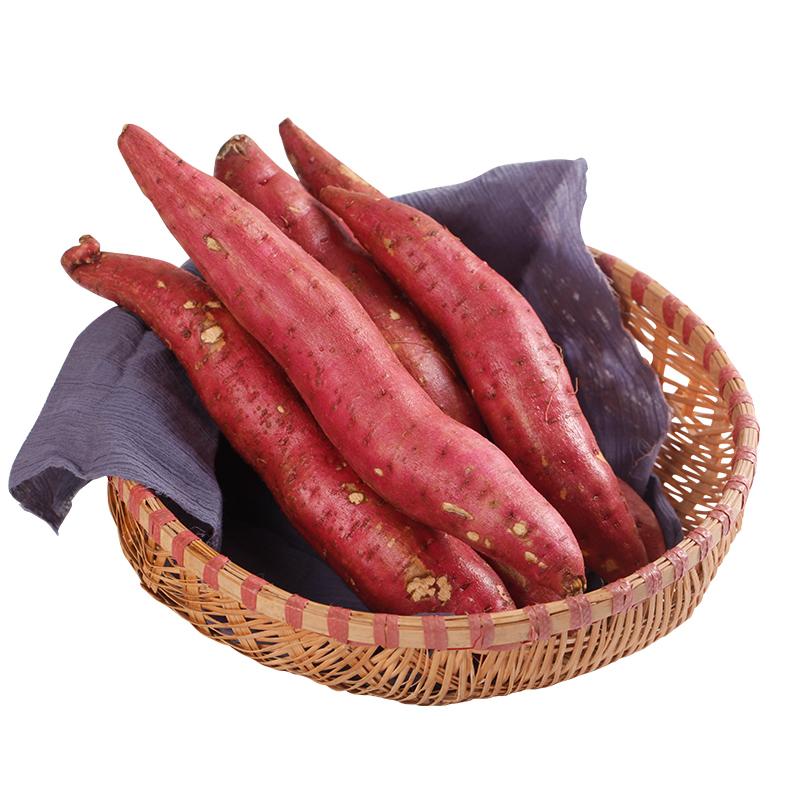 陕西合阳红薯板栗红薯秦薯农家自种新鲜香薯地瓜红蜜薯地瓜10斤