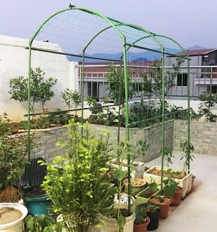 屋顶葡萄架装修设计成立建筑设计公司的要求图片