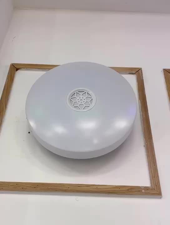 Wireless App Bluetooth Speaker RGB Light Fixture Modern Led Ceiling Lighting Light