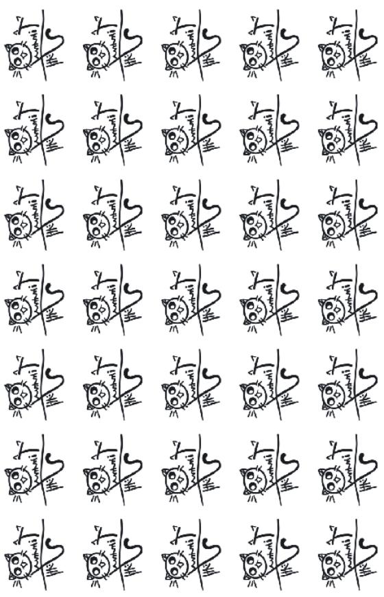许魏洲纹身贴同款 应援timmyxu 猫猫 喵喵 jojo喵 明星周边包邮图片