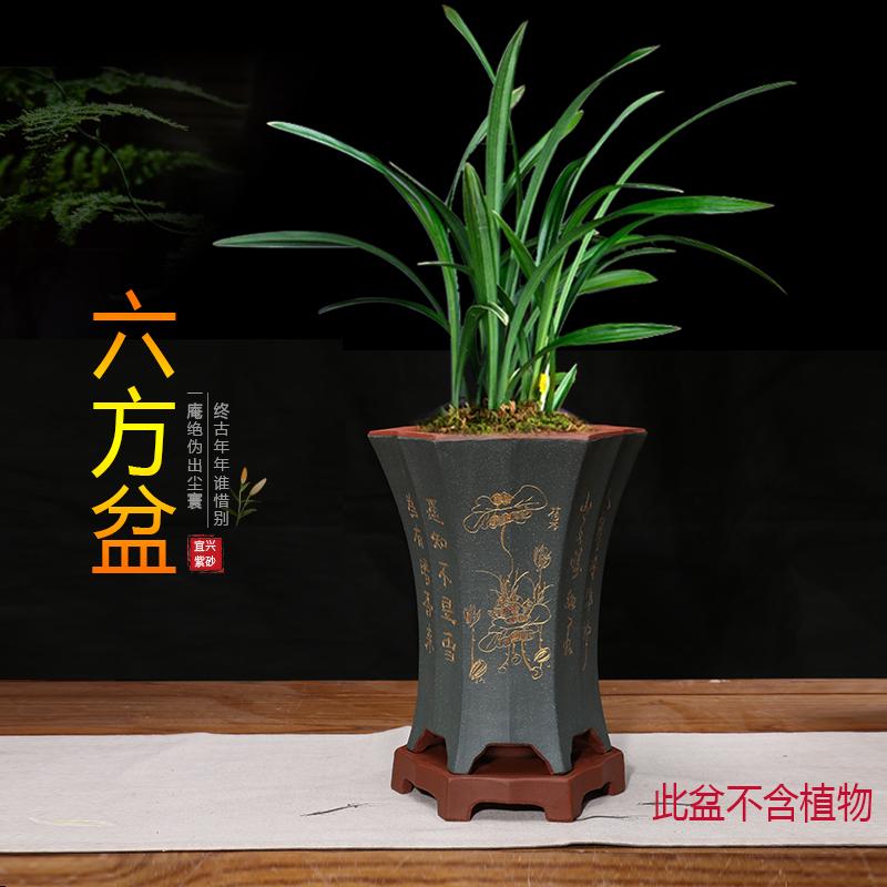 家多绿紫砂盆手工兰花花盆陶瓷刻绘花盆带托绿植盆景盆栽图片