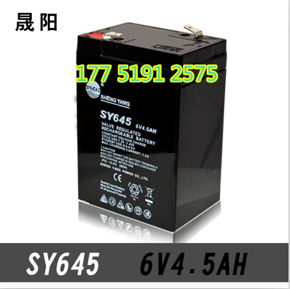 The new 6v4 5ah 20HR electronic scales said genuine Shengyang battery SY645 children's car 6V battery