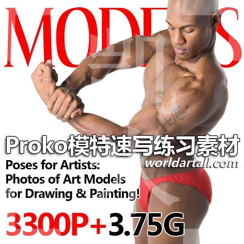 8套Proko动态绘画结构造型高清图片素材素描速写参考人体练习S572