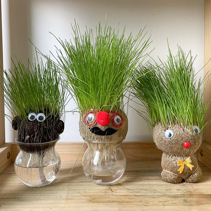 浇水长草头娃娃迷你小植物盆栽室内趣味抖音可爱桌面摆件创意礼物