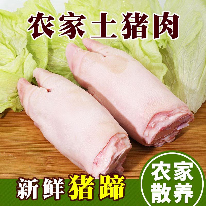 密云农家 猪蹄新鲜猪手猪腿散养生鲜土猪肉生猪肉2个前蹄约800g