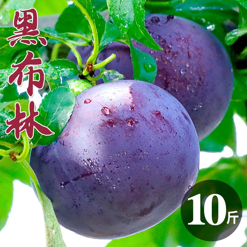 陕西黑布林李子10斤水果新鲜应季当季整箱孕妇大黄肉酸甜脆李子5