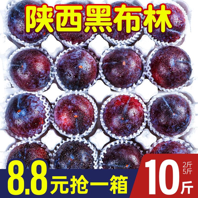 陕西黑布林李子10斤新鲜水果当季整箱包邮孕妇黄肉黑布李酸脆李子