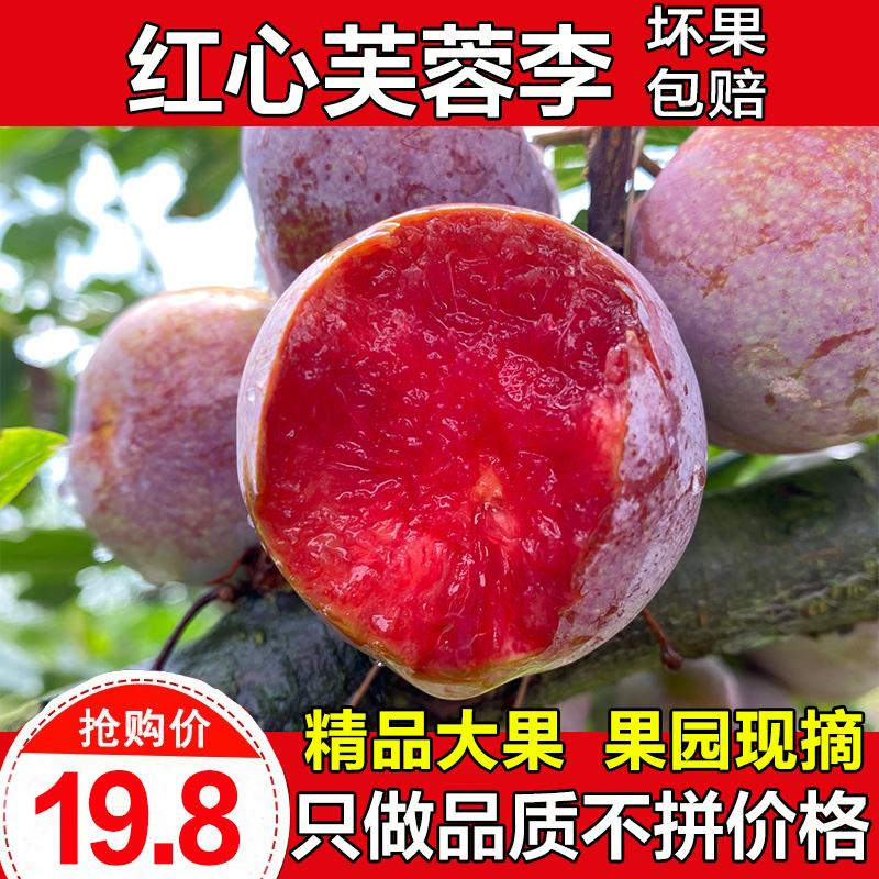 三华李红心李新鲜水果当季芙蓉李孕妇酸甜脆李子桃形李子5斤包邮