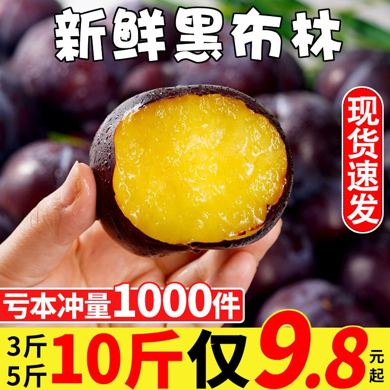 陕西黑布林李子新鲜水果10斤黑布李黑巨李大果应季水果整箱包邮
