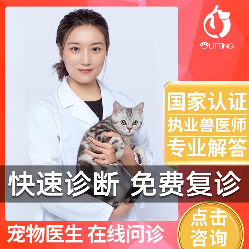宠物医生在线咨询狗猫咪兽医线上问诊看病网络药店宠物医院诊所