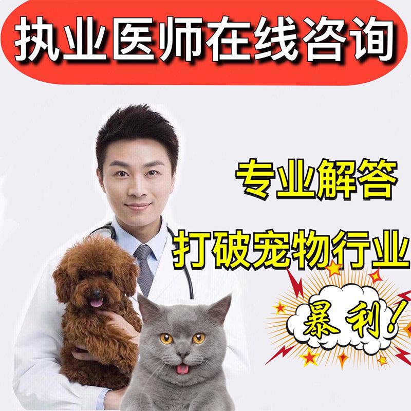 宠物医院兽医在线咨询免费宠物医生猫咪诊所狗狗专业问诊兽医在线