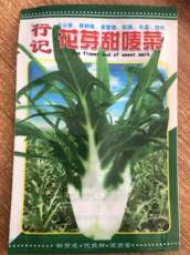 Row flower bud sweet leeks vegetable seeds