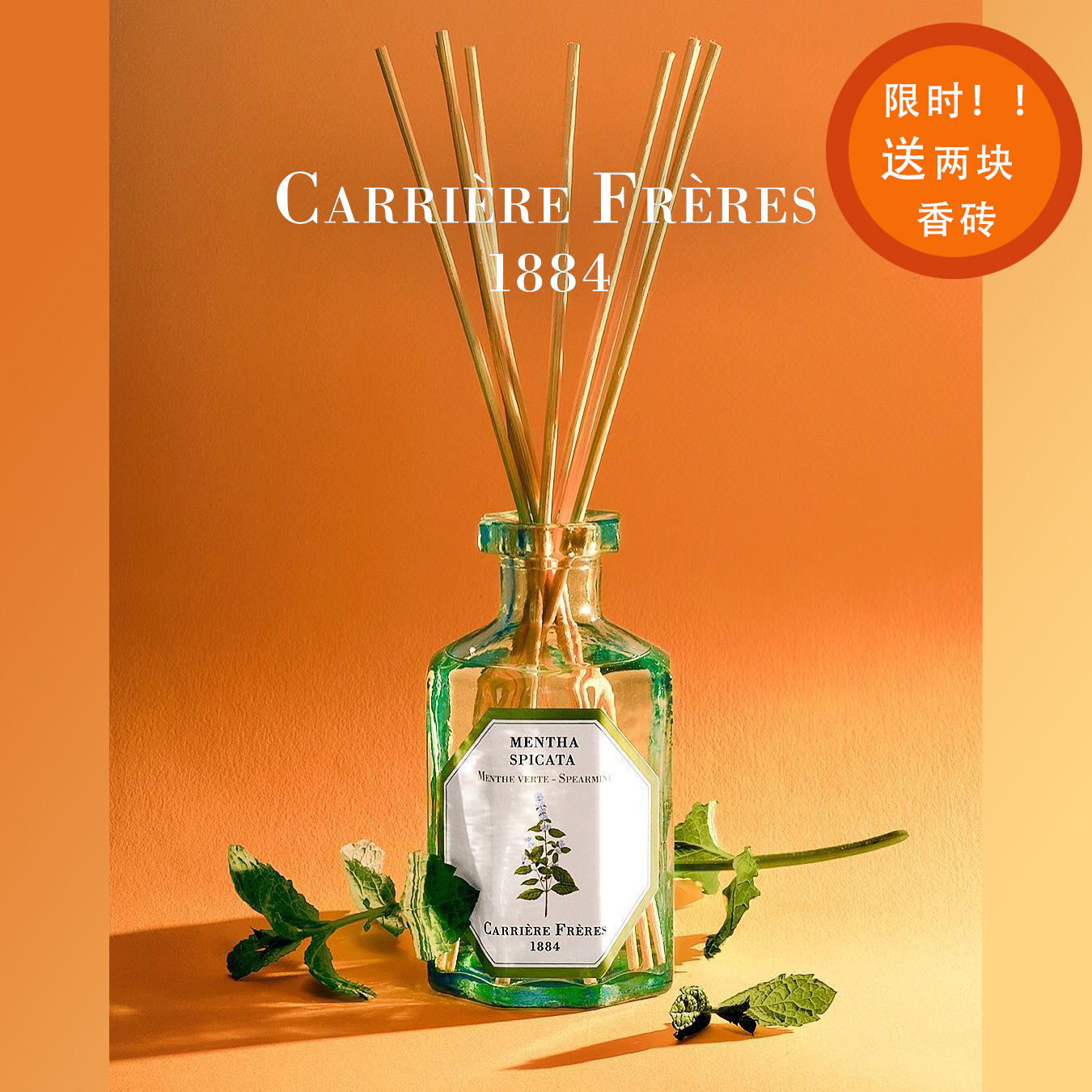 官方 法国植物学家Carriere Freres环保无火扩香藤条香氛香薰香喷
