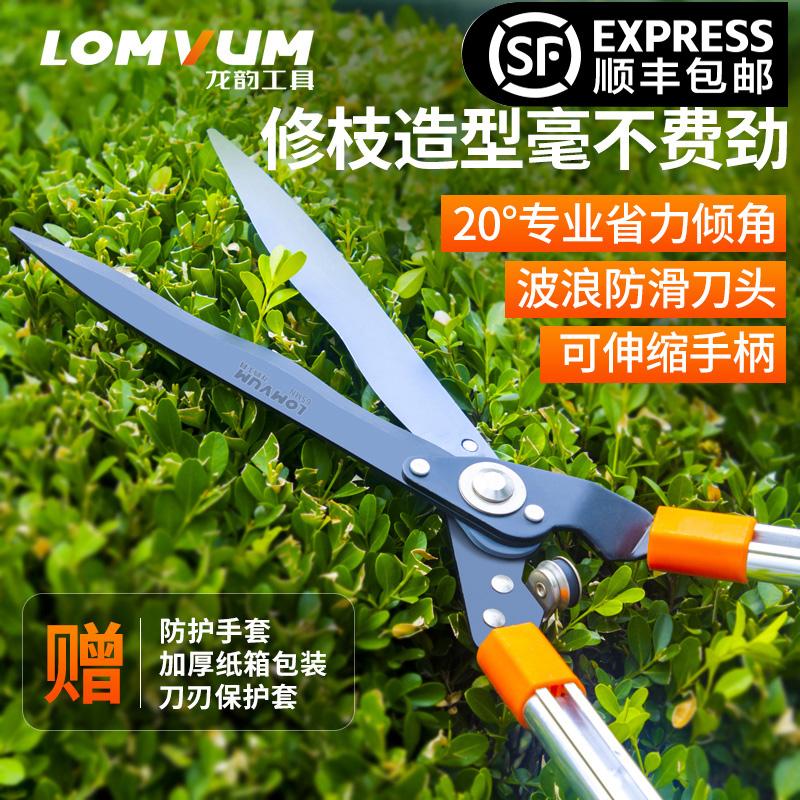 园艺剪家用草坪修花草剪刀修剪树枝绿篱剪工具粗枝园林大剪刀强力
