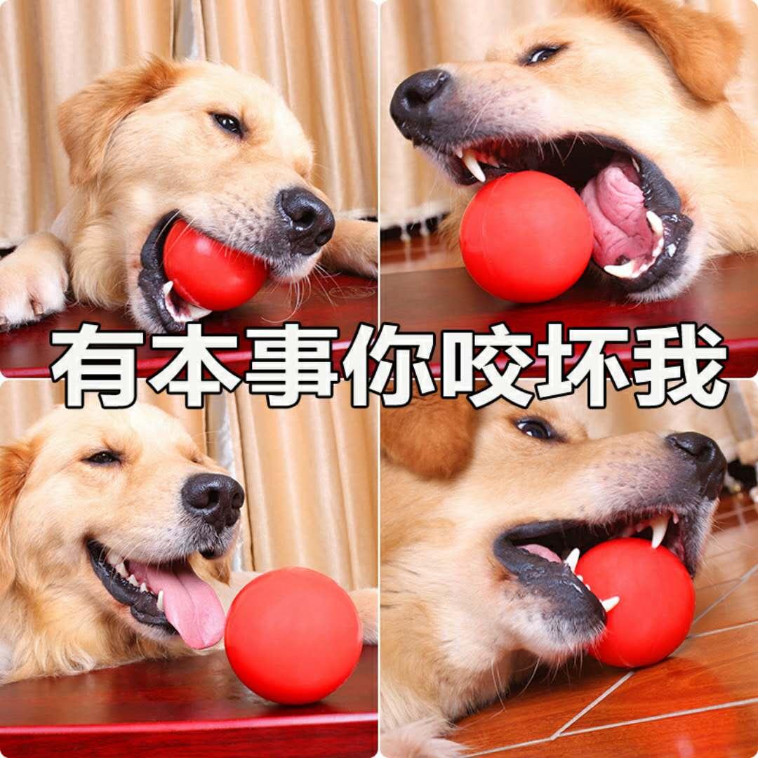 实心耐咬德牧金毛狗狗大中小号玩具球宠物弹力球橡胶球训练玩具