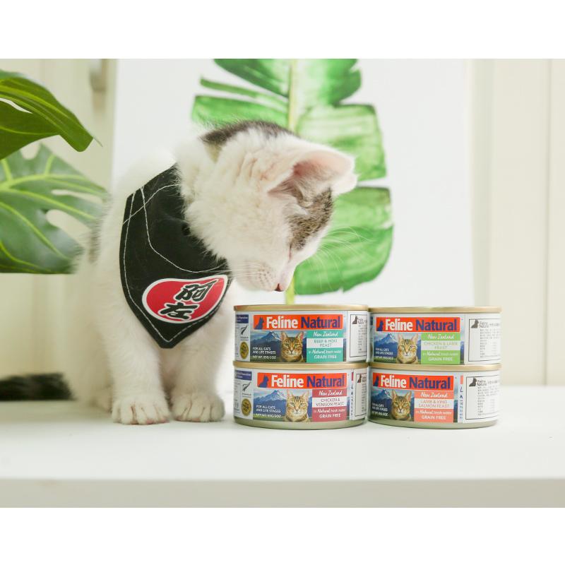 猫罐头85g*4罐 成幼猫4种不同口味 新西兰k9进口无谷主食罐头湿