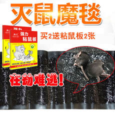 Household strong sticky mouse board mouse stickers Super strong add sticky mouse glue to kill the mouse shell magic trap
