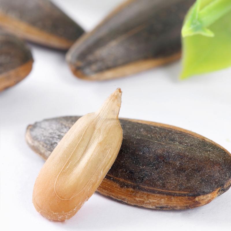引力农场焦糖瓜子500g葵花籽瓜子大颗粒焦糖味瓜子批发小包装袋装