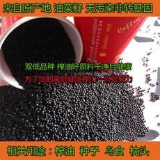 High quality rapeseed, raw materials for household oil extraction, seed, bird, farmer, self-cultivation, non-GMO, fresh rapeseed, 1 kg