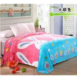 冬季薄毛毯床单珊瑚绒学生宿舍单人小毯子法兰绒加厚铺床毯法莱绒