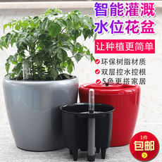 Color bright double layer detachable lazy automatic water absorption free watering level monitoring planting pot green radish pot P556
