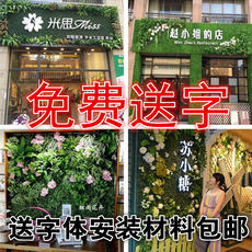 Simulation plant wall green wall artificial turf fake turf background wall indoor green fruit shop door decoration