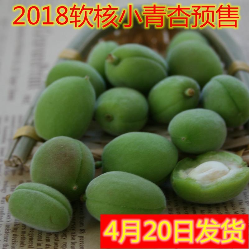 青杏 水果 新鲜 绿色酸杏现货1000g包邮 孕妇水果 酸酸的小杏子