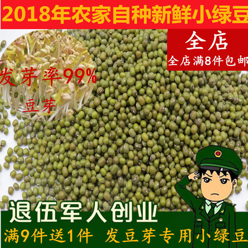新鲜纯正小粒发芽绿豆生豆芽农家自种非转基因做绿豆芽满包邮