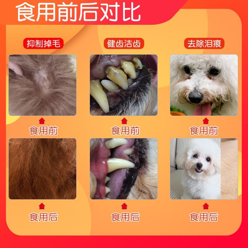 狗粮通用型1斤比熊泰迪去泪痕5幼犬天然粮20小型犬补钙长胖贵宾