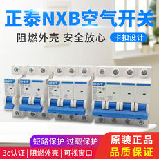 Chint NXB air switch 32a2p home open small circuit breaker total open switch 63a100a125dz47