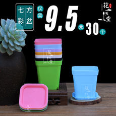 High quality small square potted succulent flower pots Multi-meat cutting seedling pots plastic pots 30 9.5 yuan