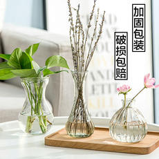 Transparent glass bottle hydroponic plant container green radish flower small vase dried flower arrangement flower living room decoration decorative flower pot