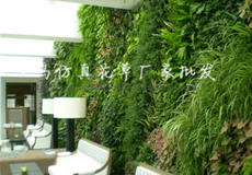 Artificial plant wal...