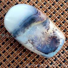 Horse water grass flower agate original stone small ornaments natural stone stone ocean chalcedony no carved pictogram hand stone